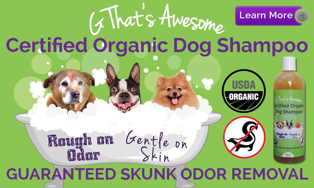 shampoo-dog-ad.jpg