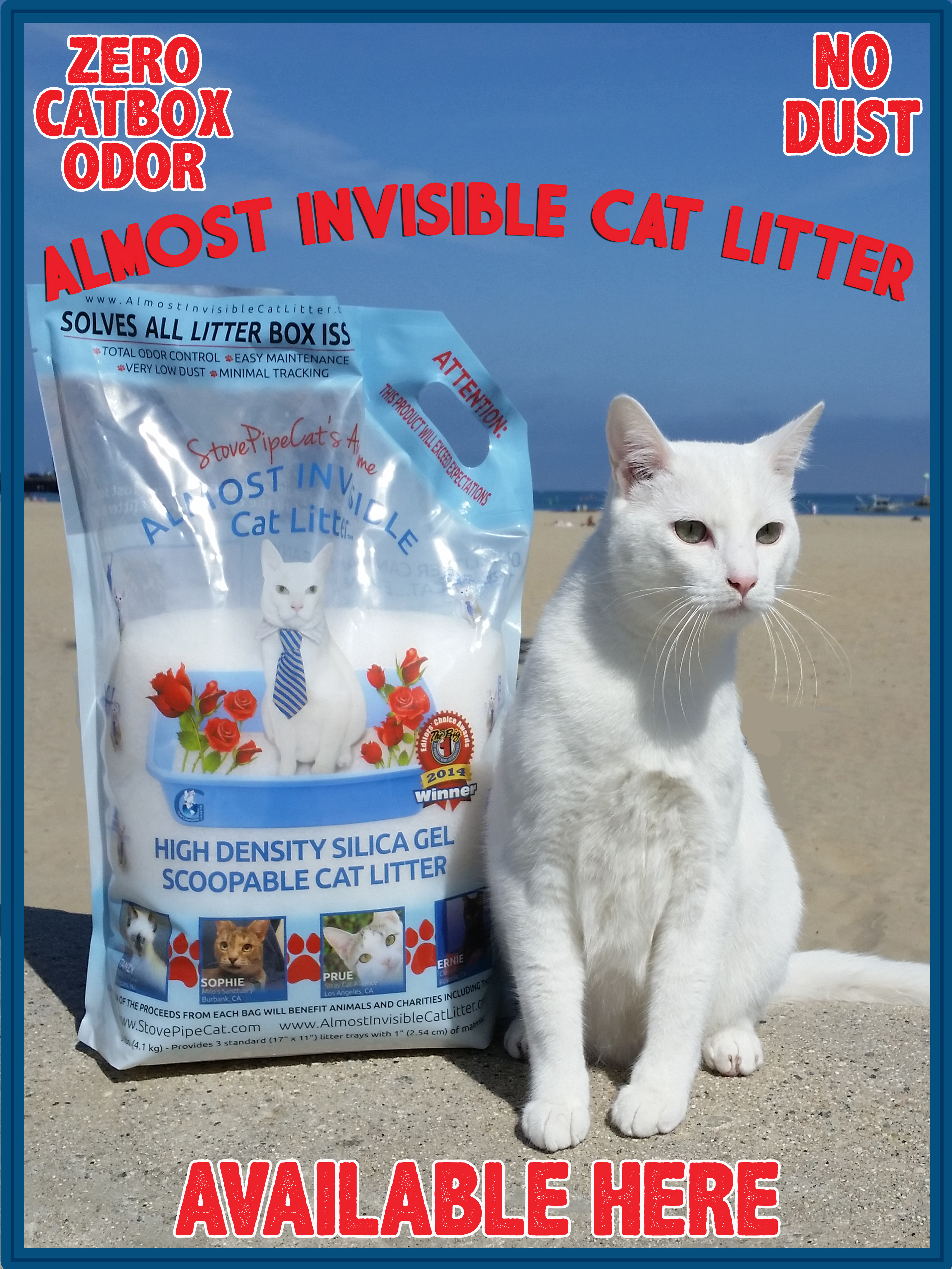 almost-invisible-cat-liiter-beach-poster.jpg