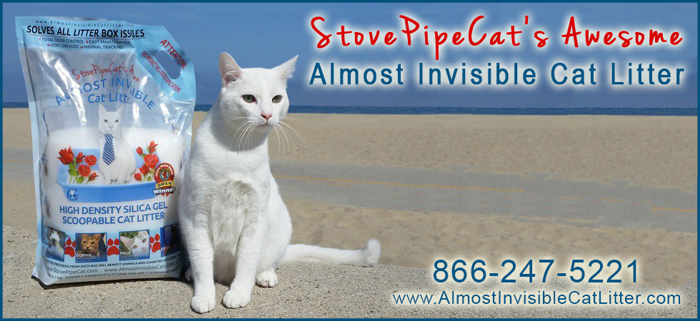 almost-invisible-cat-litter-9-pound-bags.jpg